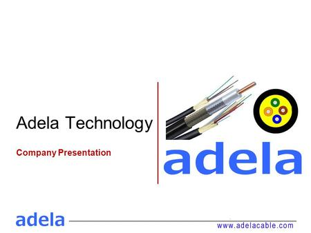 Adela Technology Company Presentation. Introduction Shenzhen Adela was established in 2008, major in fiber optical cable. After many years of development,