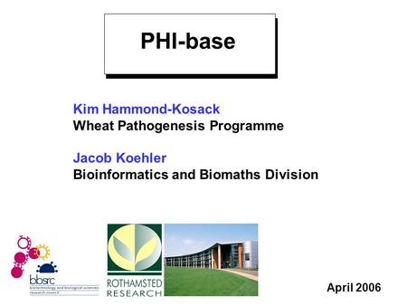 April 2006 Kim Hammond-Kosack Wheat Pathogenesis Programme Jacob Koehler Bioinformatics and Biomaths Division PHI-base.