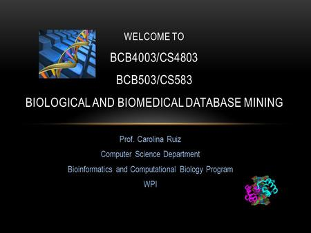 Prof. Carolina Ruiz Computer Science Department Bioinformatics and Computational Biology Program WPI WELCOME TO BCB4003/CS4803 BCB503/CS583 BIOLOGICAL.
