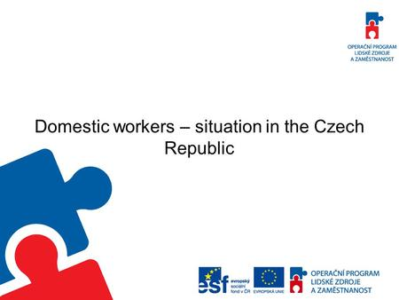 Domestic workers – situation in the Czech Republic.