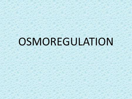 OSMOREGULATION.