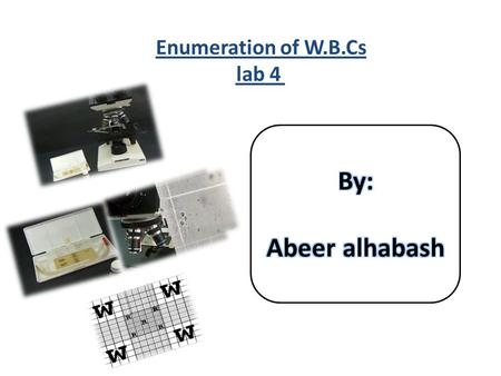 Enumeration of W.B.Cs lab 4
