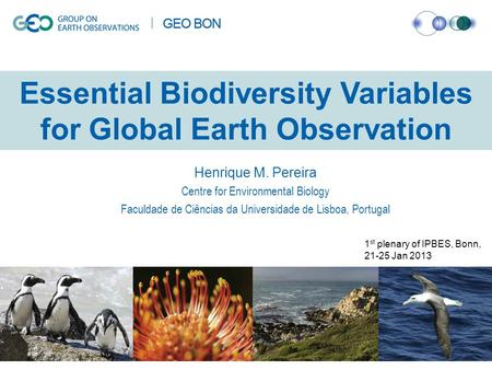 Essential Biodiversity Variables for Global Earth Observation Henrique M. Pereira Centre for Environmental Biology Faculdade de Ciências da Universidade.