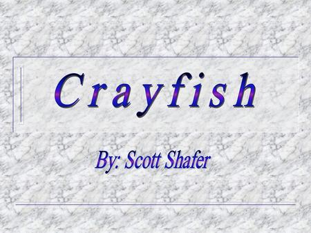 Crayfish F Crayfish are small, freshwater arthropods that resemble lobsters. They are usually brownish-green in color, but some species may be white,