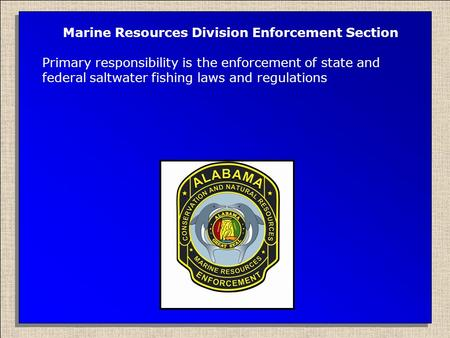 Marine Resources Division Enforcement Section Primary responsibility is the enforcement of state and federal saltwater fishing laws and regulations.