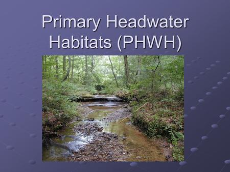 Primary Headwater Habitats (PHWH). The Basics - What is a Primary Headwater Stream? Characteristics: A Watercourse 1 with: A Watercourse 1 with: A defined.