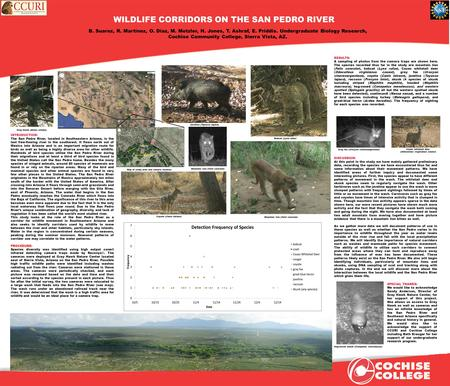WILDLIFE CORRIDORS ON THE SAN PEDRO RIVER B. Suarez, R. Martinez, O. Diaz, M. Metzler, H. Jones, T. Ashraf, E. Priddis. Undergraduate Biology Research,