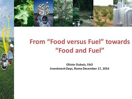 "From ""Food versus Fuel"" towards ""Food and Fuel"" Olivier Dubois, FAO Investment Days, Rome December 17, 2014."