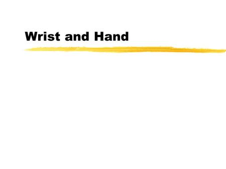 Wrist and Hand. Wrist Radiocarpal Mid-carpal (intercarpal) zmaintain length- tension relationship for hand musculature.