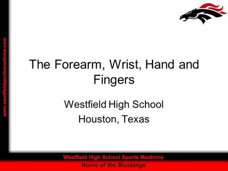 The Forearm, Wrist, Hand and Fingers Westfield High School Houston, Texas.