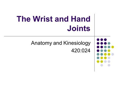 The Wrist and Hand Joints Anatomy and Kinesiology 420:024.