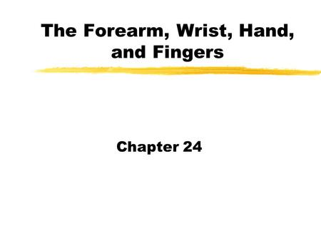 The Forearm, Wrist, Hand, and Fingers Chapter 24.