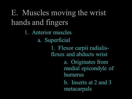 E. Muscles moving the wrist hands and fingers