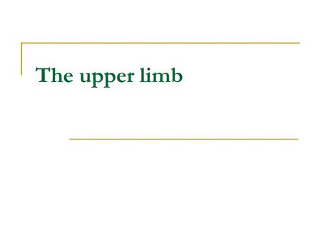 The upper limb.