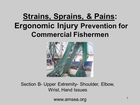 1 Strains, Sprains, & Pains: Ergonomic Injury Prevention for Commercial Fishermen Section B- Upper Extremity- Shoulder, Elbow, Wrist, Hand Issues www.amsea.org.