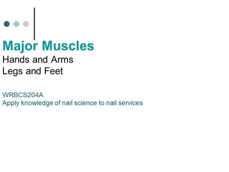Major Muscles Hands and Arms Legs and Feet WRBCS204A Apply knowledge of nail science to nail services.