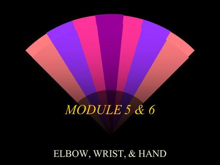 MODULE 5 & 6 ELBOW, WRIST, & HAND. ELBOW w Constitute 6% of all fractures.