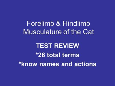 Forelimb & Hindlimb Musculature of the Cat