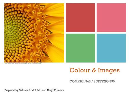 Colour & Images COMPSCI 345 / SOFTENG 350 Prepared by Safurah Abdul Jalil and Beryl Plimmer.