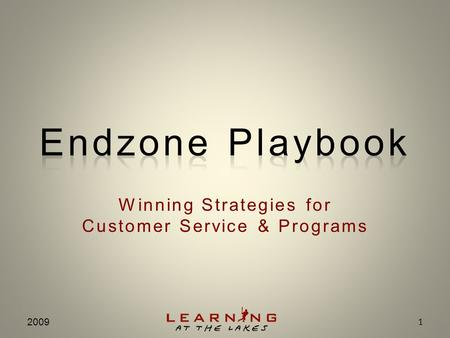Winning Strategies for Customer Service & Programs 2009 1.