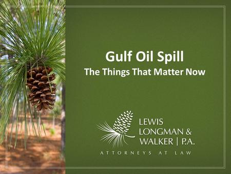 Gulf Oil Spill The Things That Matter Now. Economic Forum Title Rejects The Gulf Oil Spill & Possible Impacts on Florida's East Coast The Gulf Oil Spill.