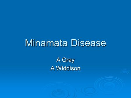 Minamata Disease A Gray A Widdison. What Happened?  In 1907 the Chisso Corporation constructed a Chemical factory in the Japanese town of Minamata 