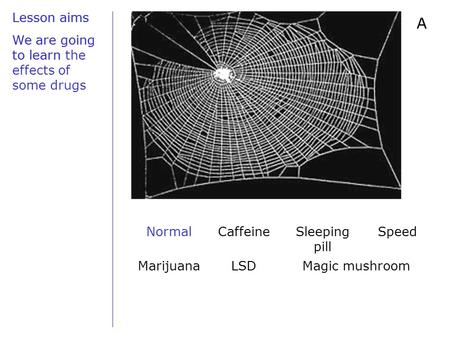 Lesson aims We are going to learn A NormalCaffeineSleeping pill Speed MarijuanaLSDMagic mushroom Lesson aims We are going to learn the effects of some.
