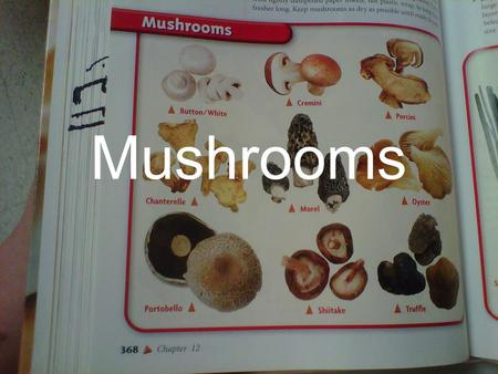Mushrooms. Button Native to the grasslands in England and North America. Most commonly and widely consumed. Also known as the White or Baby Bella.