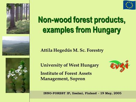 Non-wood forest products, examples from Hungary Attila Hegedűs M. Sc. Forestry University of West Hungary Institute of Forest Assets Management, Sopron.