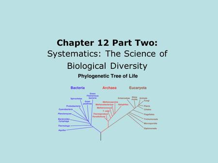 Chapter 12 Part Two: Systematics: The Science of Biological Diversity.