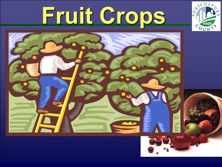 Fruit Crops. Tree Fruit & Grapes Utilized Production Tons Fresh Equivalent Jul 2012 PA - 2010PA - 2011 National Ag Statistics Service-PA, USDA.