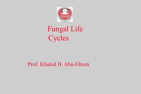 Fungal Life Cycles Prof. Khaled H. Abu-Elteen. Basic fungal life cycle fig. 13.5b 1. Zygotic - haploid phase is dominant.