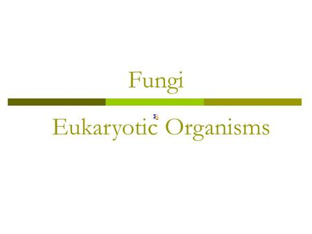 Fungi Eukaryotic Organisms. Fungi  Mycology: The study of fungi.  Fungi: A diverse group! Can be… Heterotrophic: Any organism that cannot synthesize.
