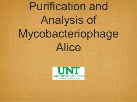 Purification and Analysis of Mycobacteriophage Alice.