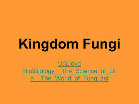 Kingdom Fungi U:\Lloyd Bio\Biology__The_Science_of_Lif e__The_World_of_Fungi.asf.