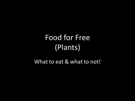 Food for Free (Plants) What to eat & what to not!.