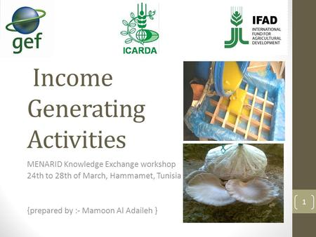 Income Generating Activities MENARID Knowledge Exchange workshop 24th to 28th of March, Hammamet, Tunisia {prepared by :- Mamoon Al Adaileh } 1.