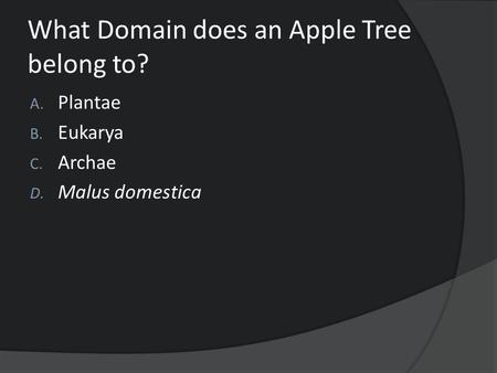 What Domain does an Apple Tree belong to? A. Plantae B. Eukarya C. Archae D. Malus domestica.