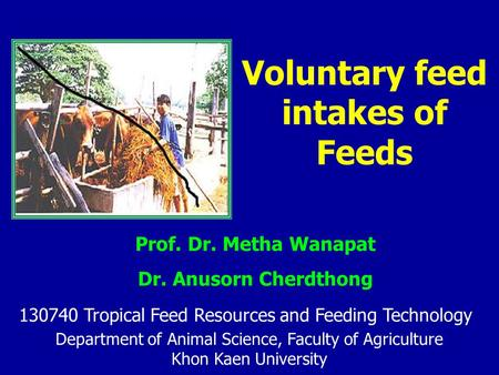 Voluntary feed intakes of Feeds Department of Animal Science, Faculty of Agriculture Khon Kaen University Prof. Dr. Metha Wanapat Dr. Anusorn Cherdthong.