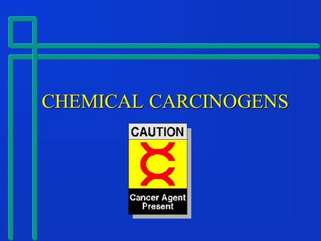 CHEMICAL CARCINOGENS CHEMICAL CARCINOGENS. What is a Chemical Carcinogen?  Any chemical compound which has been shown to cause cancer in humans or in.