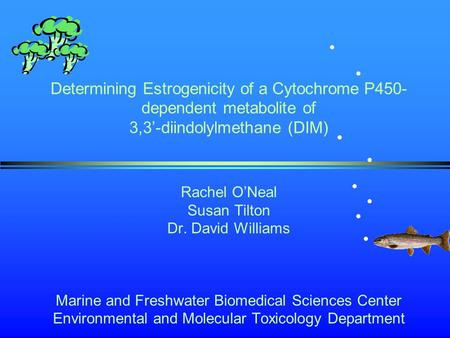 Determining Estrogenicity of a Cytochrome P450- dependent metabolite of 3,3'-diindolylmethane (DIM) Rachel O'Neal Susan Tilton Dr. David Williams Marine.
