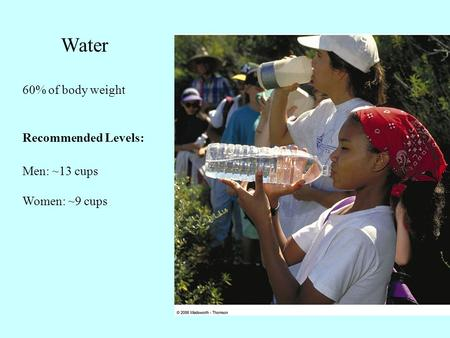 Water 60% of body weight Recommended Levels: Men: ~13 cups Women: ~9 cups.