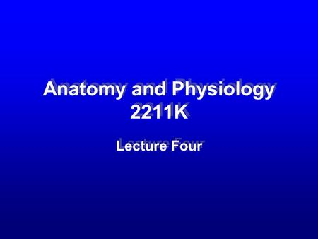 Anatomy and Physiology 2211K Lecture Four. Slide 2 –Upper and lower respiratory tract.