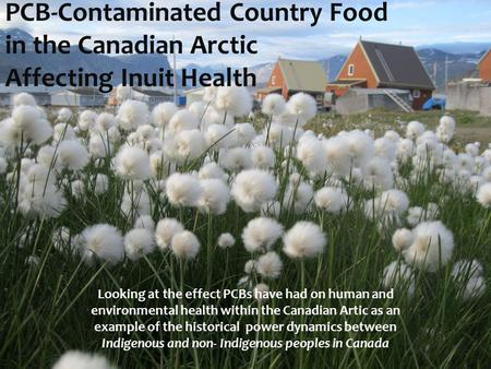 PCB-Contaminated Country Food in the Canadian Arctic Affecting Inuit Health Looking at the effect PCBs have had on human and environmental health within.