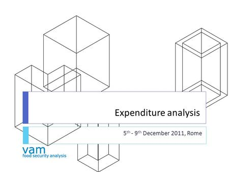 Expenditure analysis 5 th - 9 th December 2011, Rome.