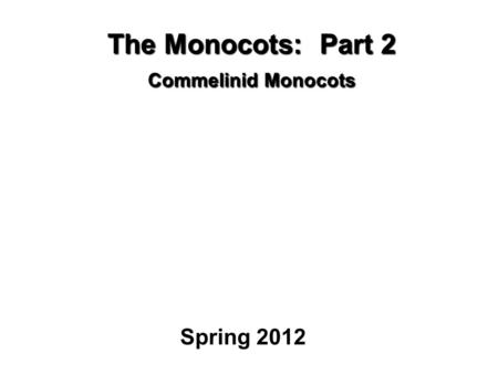 The Monocots: Part 2 Commelinid Monocots Spring 2012.