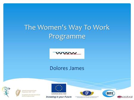 The Women's Way To Work Programme Dolores James.  Established in 1999  Training 600 people per year  BITC's Ethos  Community Service Programme The.
