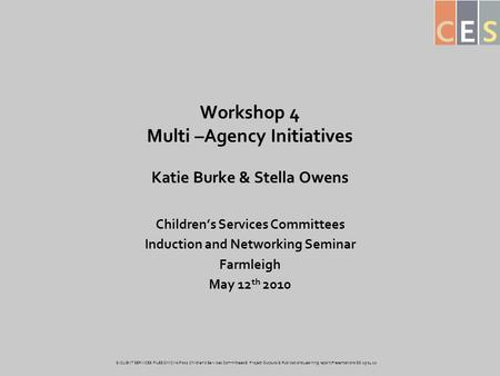 Workshop 4 Multi –Agency Initiatives Katie Burke & Stella Owens Children's Services Committees Induction and Networking Seminar Farmleigh May 12 th 2010.