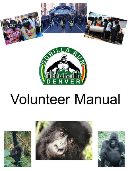 Volunteer Manual. Thank You! Thank you so much for your willingness to help at the Denver Gorilla Run! Volunteers are an important part of our fundraising.