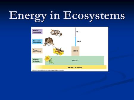 "Energy in Ecosystems. All organisms require energy to live Recall Photosynthesis: Recall Photosynthesis: Energy from the sun is ""captured"". The energy."